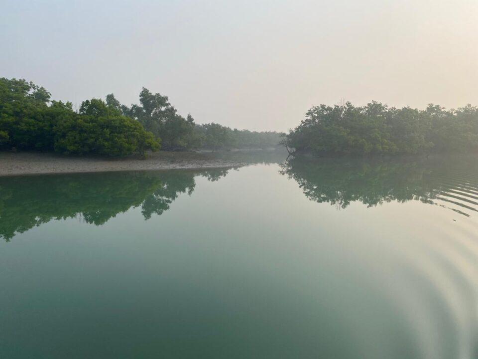Sundarban Mangrove Forest